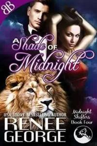 1 A Shade of Midnight