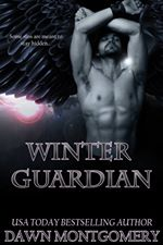 28 Winter Guardian