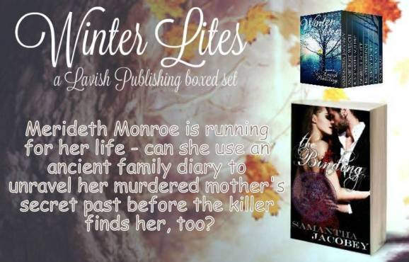 Winter Lites Teaser 1.jpg